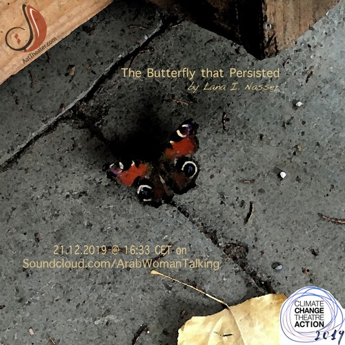 The Butterfly That Persisted & A talk