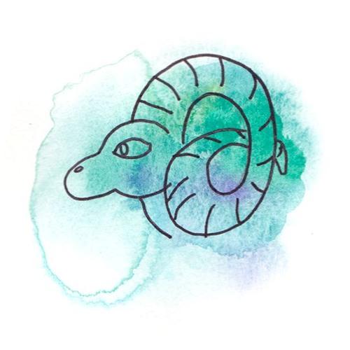 Horoscope 2020 - Capricorne 1er décan