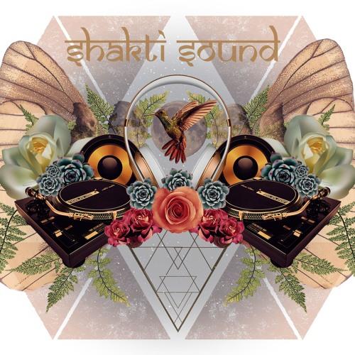 Shakti Sound Artists