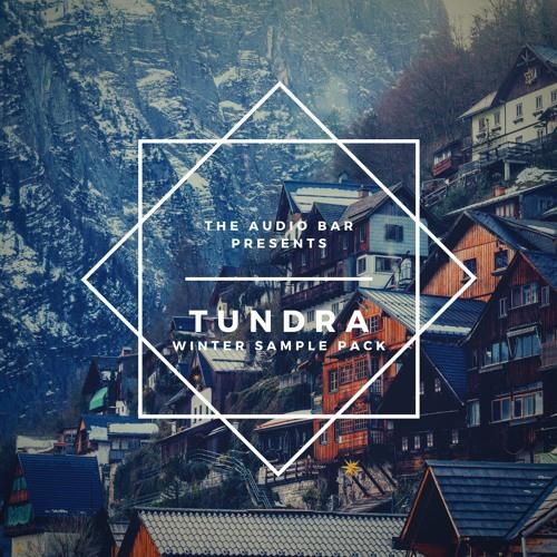 Tundra [NI MASSIVE & SYLENTH1 PRESETS PACK]