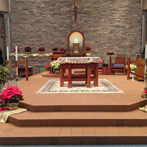 Homilies for the Nativity of the Lord (Christmas)