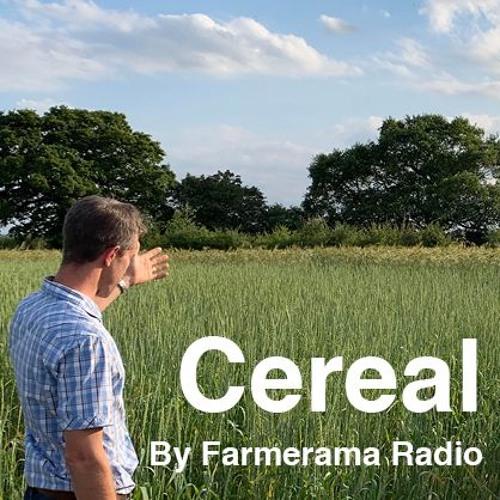 'Cereal' Episode 6: Grain futures