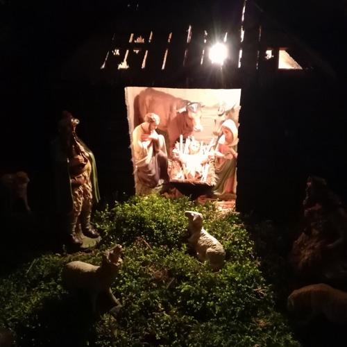 Jesus wird am Fest Seiner Geburt auf die Seite gerempelt!