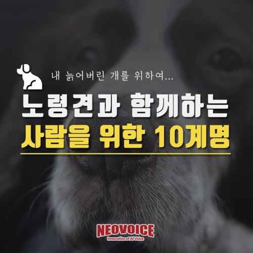 [정보] 10계명 카드뉴스 인공지능TTS