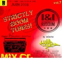 INI RIDDIM MIX CD VOLUME 8 (JULY 2008)