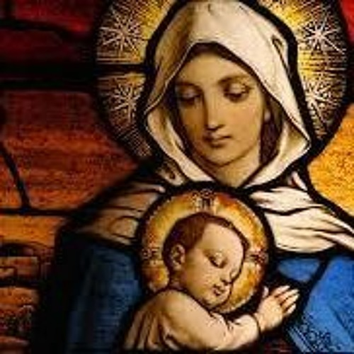 Homily for Mary, the Holy Mother of God - Fr. Todd Dominique