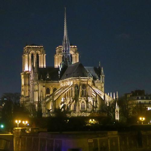 Entre monument et pittoresque. La construction du regard sur Notre-Dame de Paris au XIXe siècle