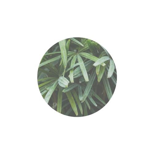 Niyam - Verdure