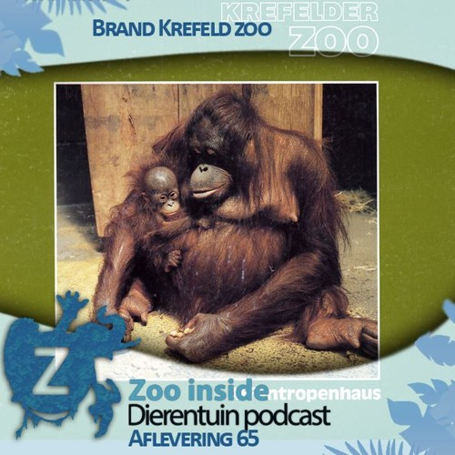 Zoo inside #65 - Brand Krefeld Zoo