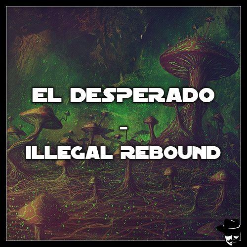 Illegal Rebound