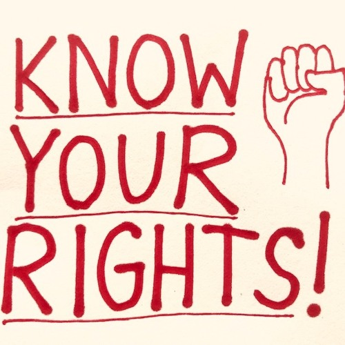 Episode 5: Know Your Rights! (Part 1)