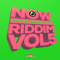 NOW THATS WHAT I CALL RIDDIM VOLUME 5 Artwork