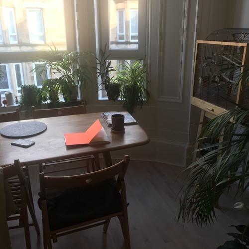 C'est La Vie by Audun Mortensen read by Hanne Lillee