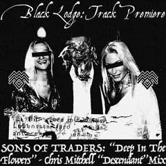 """BL Premiere: SONS OF TRADERS - """"Deep In The Flowers [Chris Mitchell Descendant Mix]"""""""
