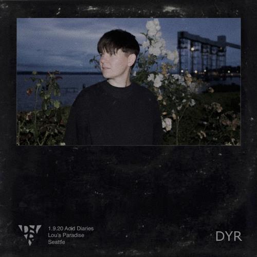 DYR // 1.9.20 Acid Diaries