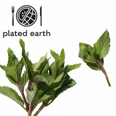 Episode 114 - Food Fable: Peppermint