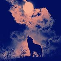 FULL WOLF MOON - DKFROMTHEPACK (PROD. CYANXDE) Artwork