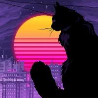 Pogrzeb kota