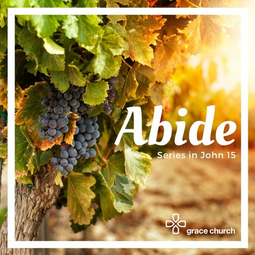 Abiding in Christ and Bearing Fruit | John 15:1-8 | 12/01/20