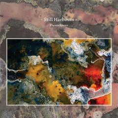 Still Harbours - Fluorochrome (Album Mini-Mix)