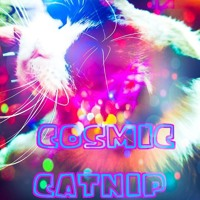 Cosmic Catnip Artwork