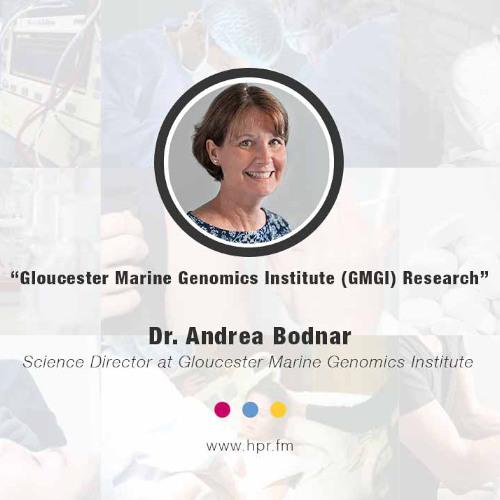 Gloucester Marine Genomics Institute (GMGI) Research