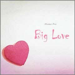 Memo Pro - Big Love