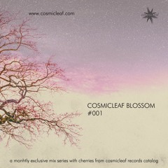 Cosmicleaf Blossom #001 (Mixed by Nick Miamis aka Side Liner)