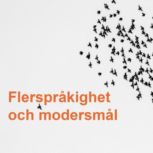 1 av 3. Språk- och kunskapsutvecklande arbetssätt: Flerspråkighet och modersmål
