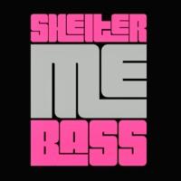 Shelter Me Bass Artwork