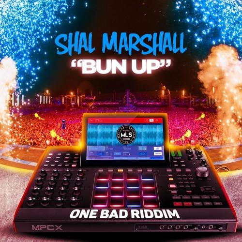 """Shall Marshall: """"Bun Up"""""""