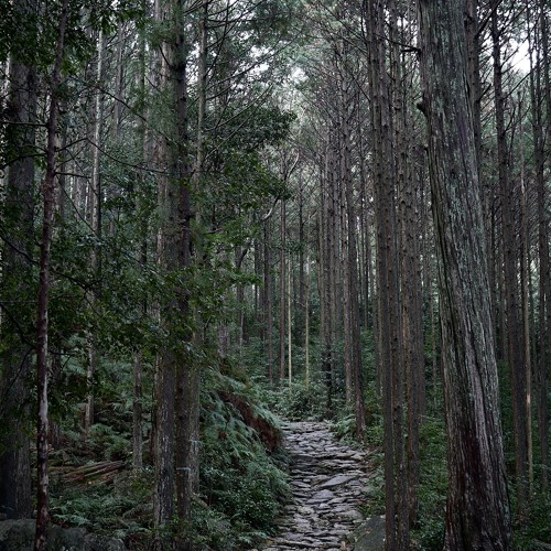 Kihoku - Owase Trail