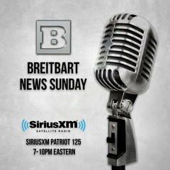 Breitbart News Sunday - January 19, 2020