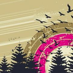 Fly Away ft Sergi Yaro