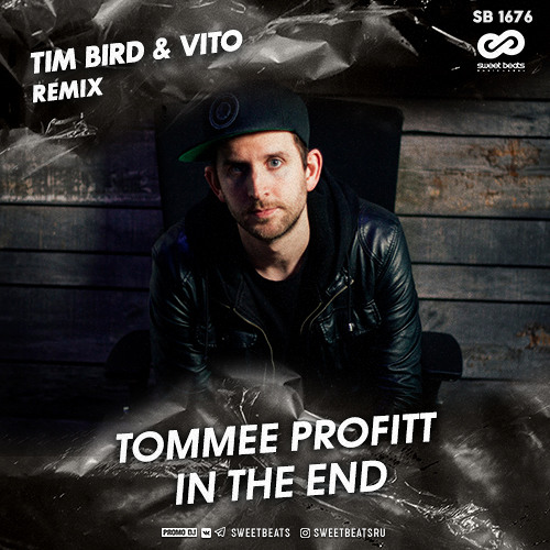 Tommee Profitt -In The End (Tim Bird & Vito Remix)[Free Download]