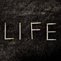 Life (feat. Lisa) Artwork