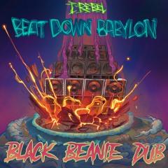 Beat Down Babylon (ft. I-Rebel)