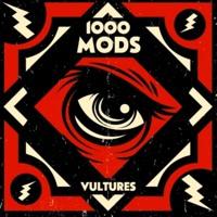 1000mods She