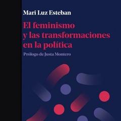 «El feminismo y las transformaciones en la política» Mari Luz Esteban