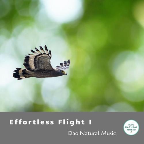 Effortless Flight I
