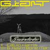 Calvin Harris Feat Rag 'n' Bone Man - Giant (Saundinho Remix) Portada del disco