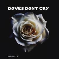 Doves Dont Cry - Dj Vanwells Artwork