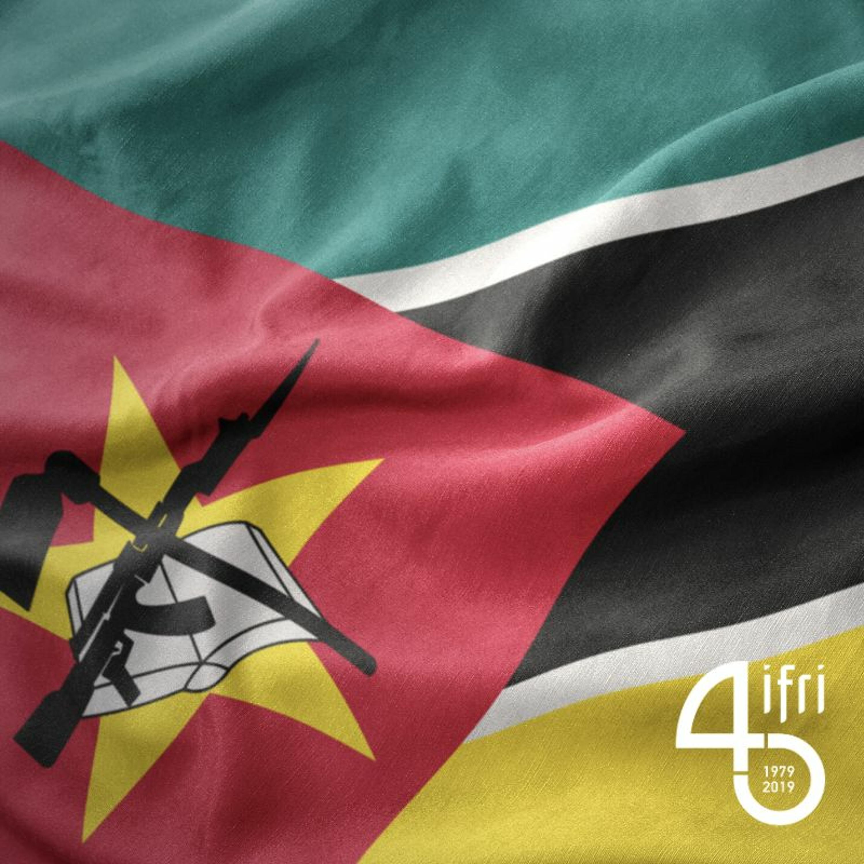 Les Élections De 2019 au Mozambique