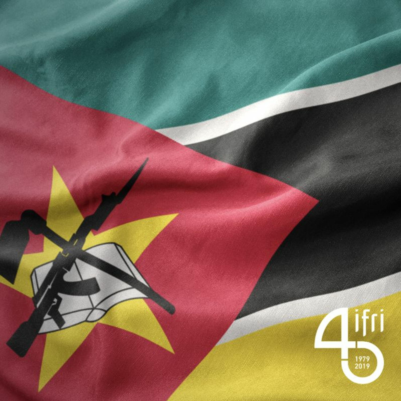 L'insurrection Islamiste Et La Renamo au Mozambique