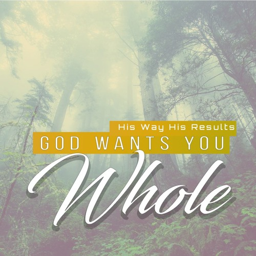 His Way His Results - God Wants You Whole