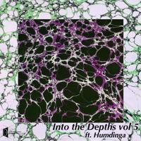 Into The Depths Vol. 5 Ft Humdinga