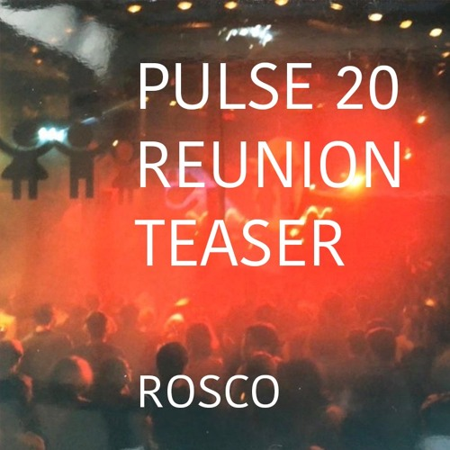 Pulse 20 Reunion - Teaser Mix (Part II) Vinyl Only