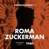 Assembling Radio 11 by Roma Zuckerman (трип)