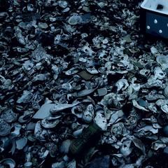 sea shells, lei yue mun