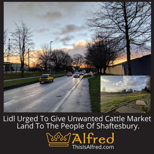 Lidl Urged To Give Unwanted Cattle Market Land To The People Of Shaftesbury.